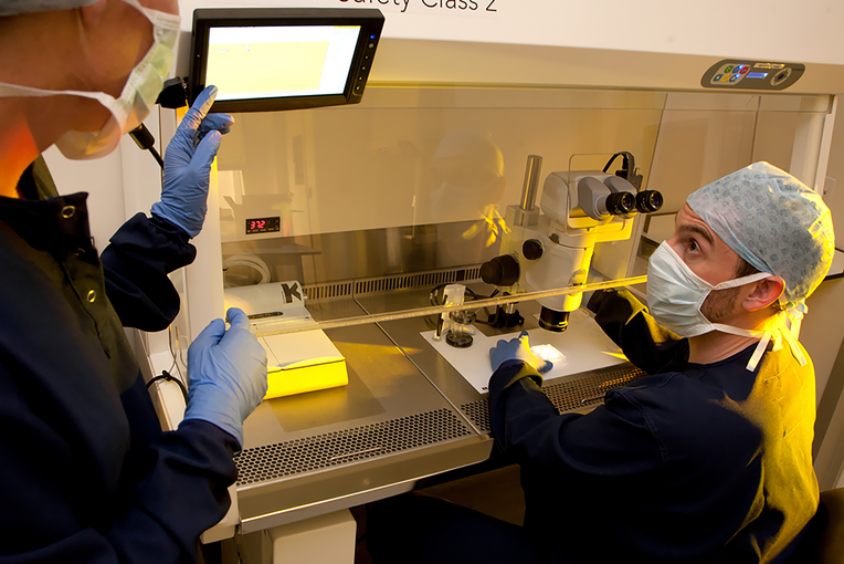 Embryologists at Cambridge IVF
