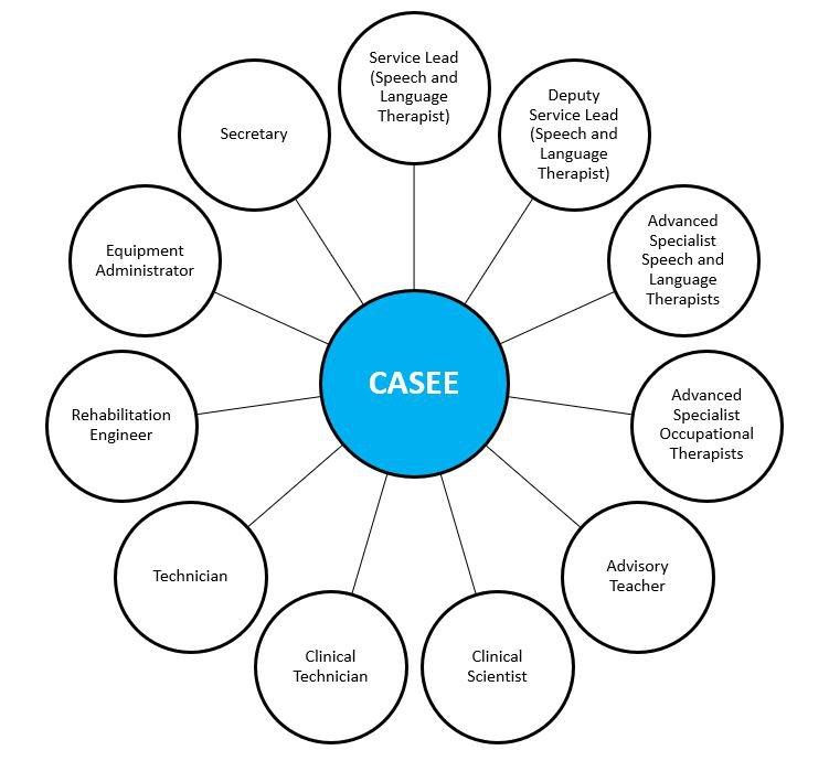 CASEE team structure