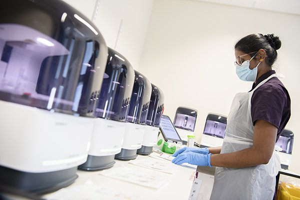 A member of staff operating the SAMBA testing machine.