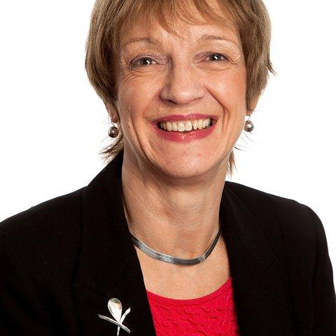 Non-executive director - Shirley Pointer