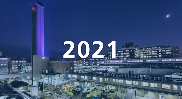 Board of directors meetings - 2021