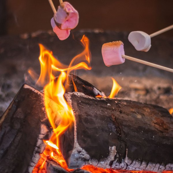A picture of a campfire